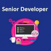 senior developer job talent jdi