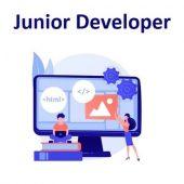 junior developer job talent jdi